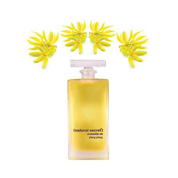 Luxury Aromatic Body Care Oils
